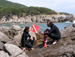 Signalisation du plongeur isolé